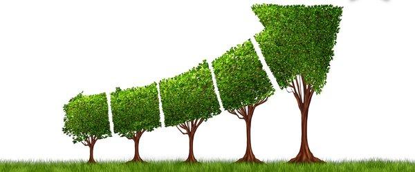 La economía ambiental - Analytica